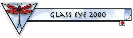 Glass eye Program logo